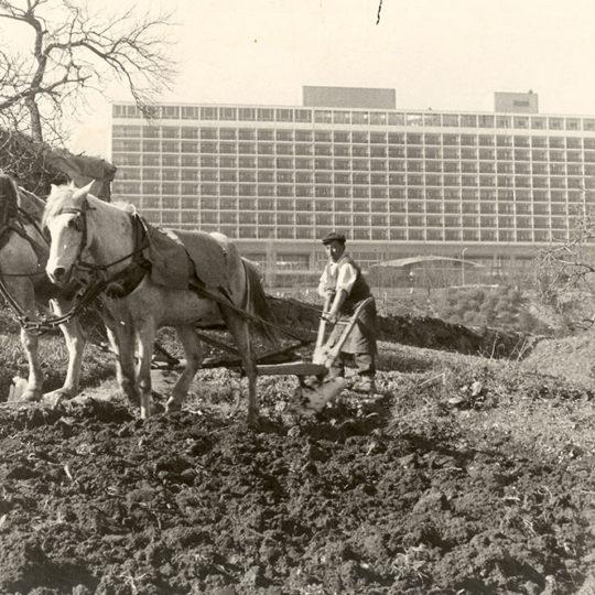 1976 İstanbul… Arkada Hilton Oteli, önde karasaban….Arkamda Beşiktaş Vodafone Arena var. O zamanki adıyla, İnönü Stadı.